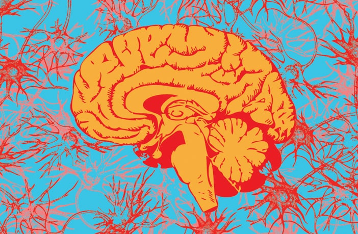 New study confirms some of the neurophysiological predictors of creativity