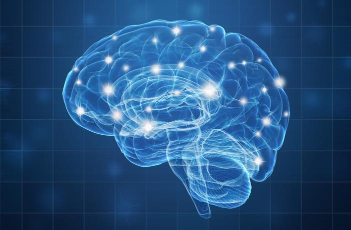Heightened connectivity between two brain networks is associated with anger and aggression